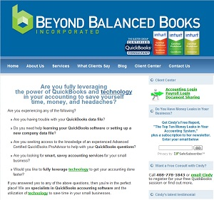 Beyond Balanced Books, Accounting Website