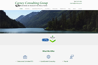 Carney Consulting Group Website Screenshot