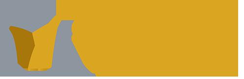 Orange checkmark Smith and Jones Logo Sample