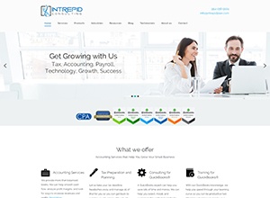 Intrepid Consulting by Accelerator Websites