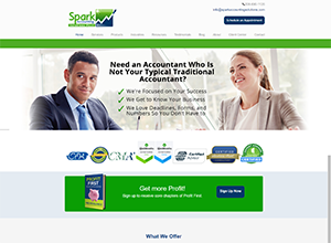 Spark Accounting Solutions PLLC Website Screenshot
