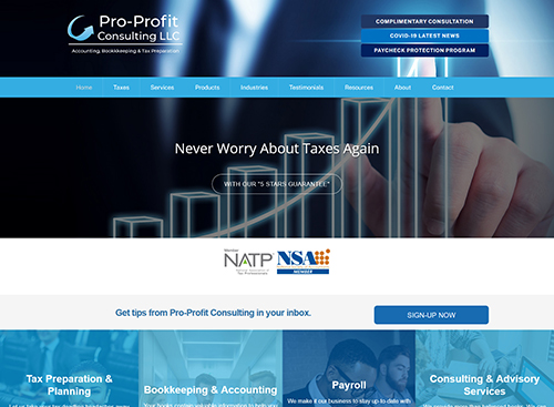 Pro-Profit Consulting Website Screenshot
